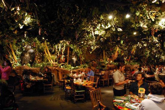 Rainforest Cafe Parking San Francisco
